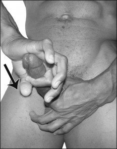horse squeeze penis exercise