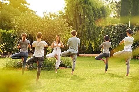 Beginner Biohacking - Yoga rewilding (Giardiono Ascona)