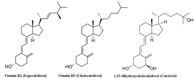 Vitamin D Molecular Structure
